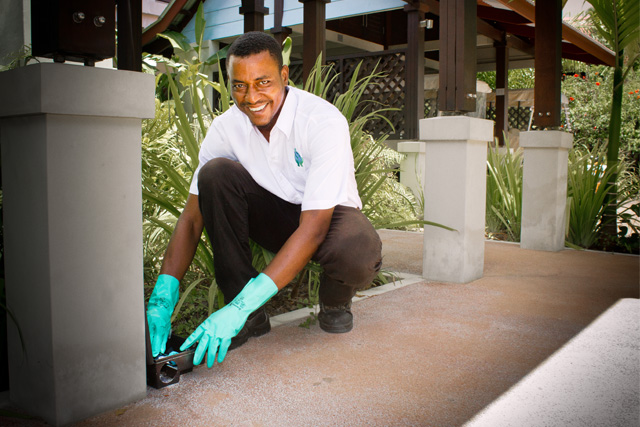 expert_pest_control_in_seychelles