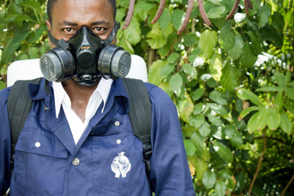 Pest-Control-in_Seychelles_fumigation_in_seychelles_2
