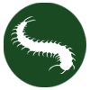 pest-control-in-seychelles-hairy_centipedes-icon