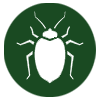 pest-control-in-seychelles_bed-bugs_mites_lice_icon