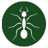 pest-control-in-seychelles_ants_icon