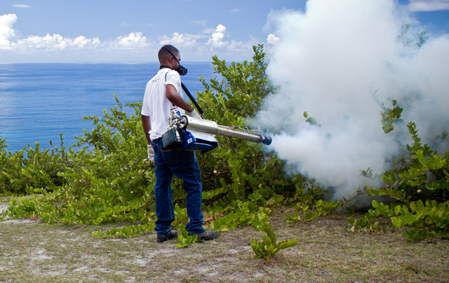 Expert-Pest-Control_in_Seychelles