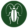 pest-control-in-seychelles-cockroaches-icon