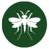 pest-control-in-seychelles-fungus_gnats-icon