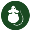 pest-control-in-seychelles-rodents-icon