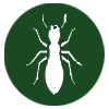 pest-control-in-seychelles-termites_icon