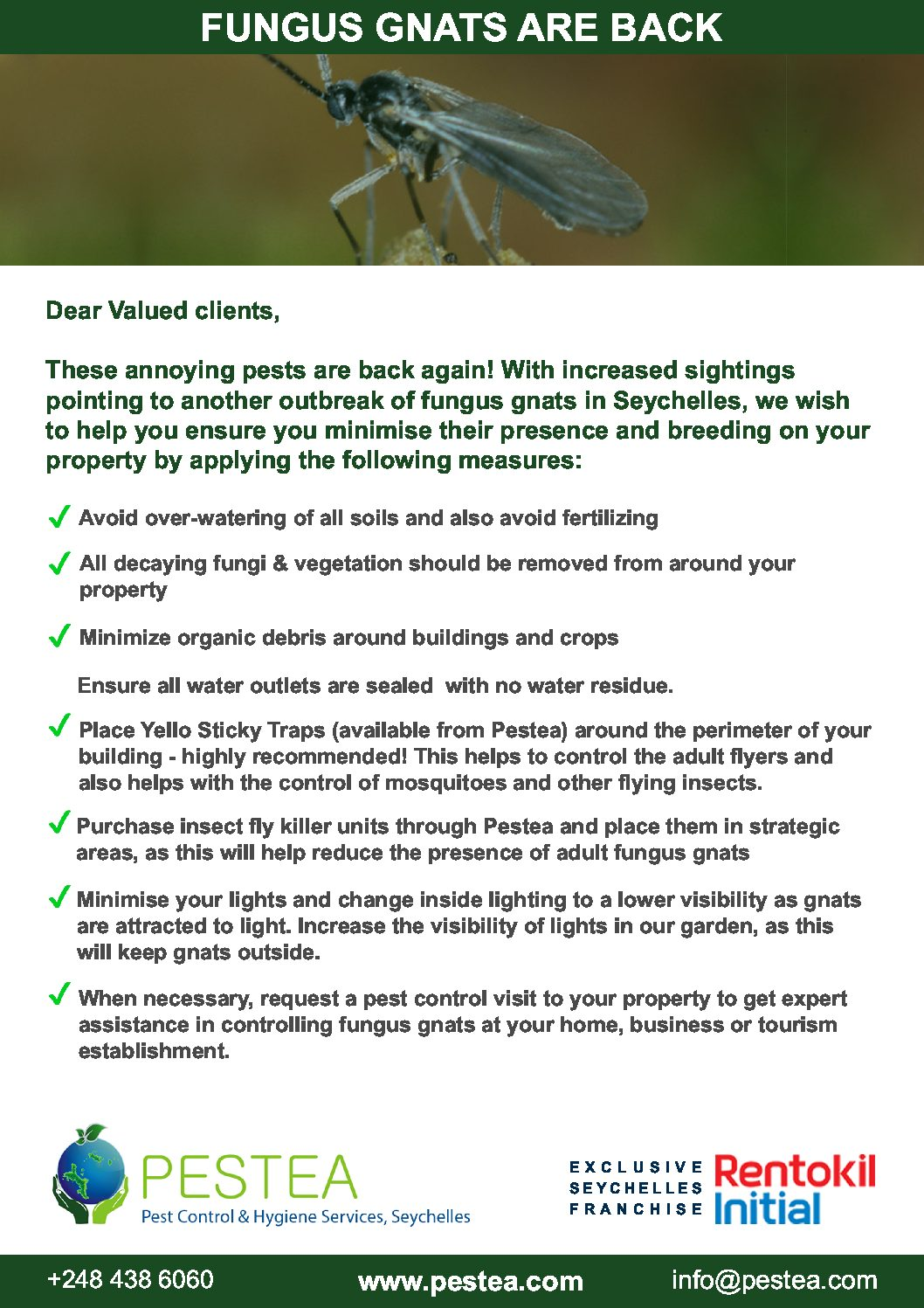 Download Fungus Gnat Control Checklist