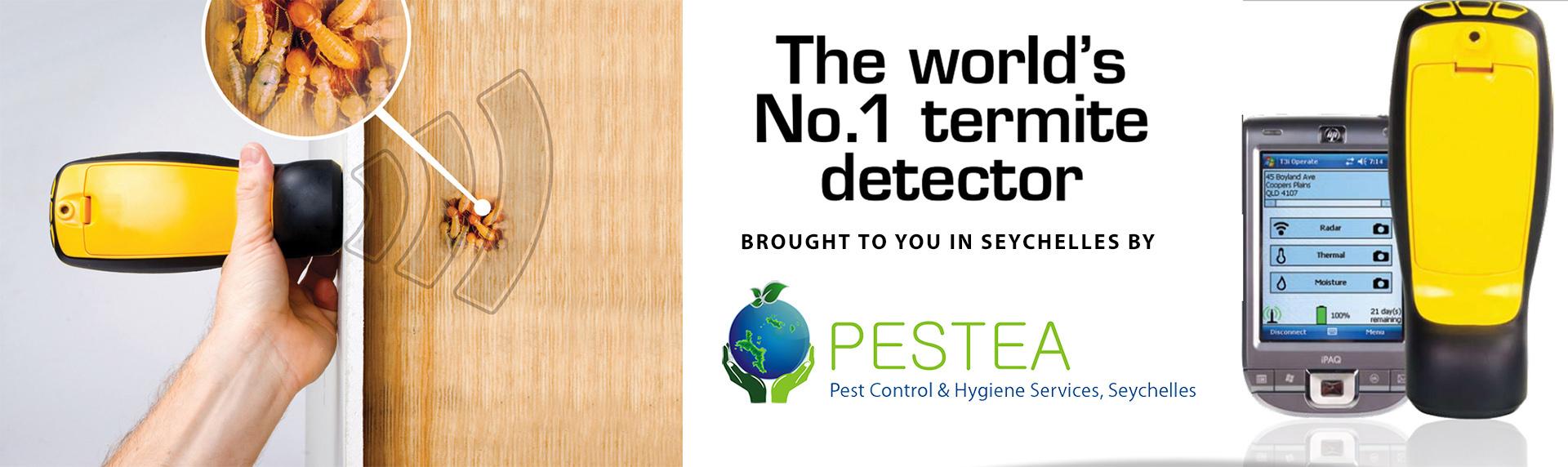 Pestea_termite_detection_in_Seychelles